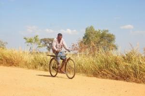 Un hombre anda en bicicleta en un pueblo afectado por la sequía en la zona de Mahavellithanne, 350 kilómetros al noreste de Colombo, en Sri Lanka, donde la temperatura máxima superó los 38 grados centígrados en la primera semana de octubre de 2016. Crédito: Amantha Perera/IPS