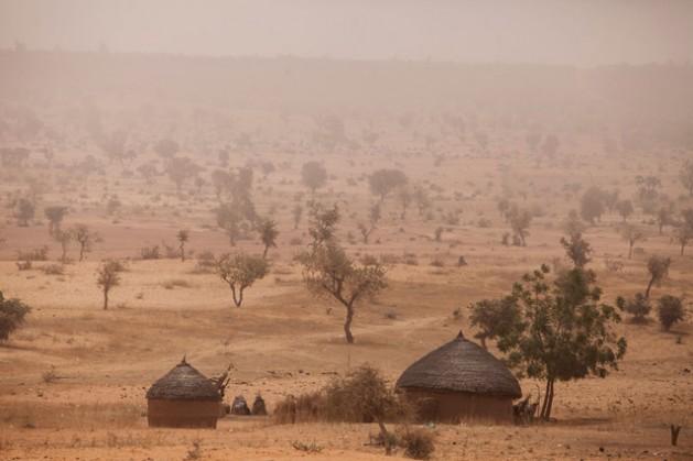 La región semidesértica del Sahel en Níger. Los nutrientes obtenidos del pescado que se captura durante la estación lluviosa pueden marcar una diferencia en la vida de las personas más vulnerables, en particular si lo pueden secar y almacenar bien para consumirlo a lo largo del año. Crédito: FAO