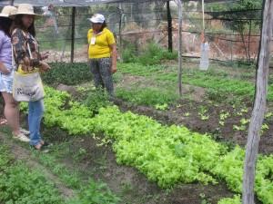 """""""Este huerto cambió mi vida"""", dice Rita da Silva (a la derecha, de amarillo), en el Asentamiento Primero de Mayo, donde viven 65 familias. Un grupo de mujeres se organizó para cultivar colectivamente hortalizas y frutales para consumo de la comunidad y la venta en la feria de Caraúbas, una ciudad cercana del Nordeste de Brasil. Crédito: Mario Osava/IPS"""