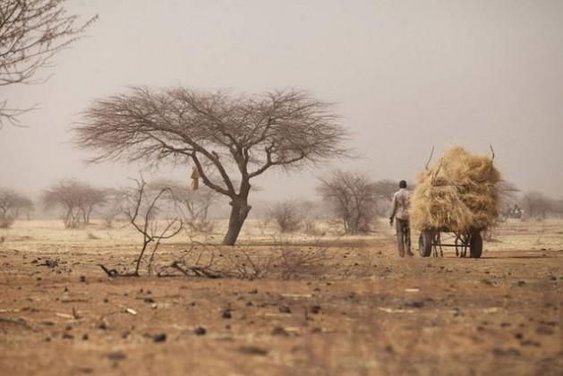 La escasez de agua es uno de los conflictos que deben solucionar las políticas que se adopten dentro del marco del Acuerdo de París.