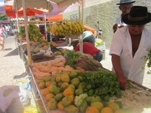 Luis Alves Maia en el puesto de la feria agroecológica donde vende cada sábado sus frutas y verduras en Apodi. Él forma parte de los campesinos afortunados, que no se han visto afectados por la pertinaz sequía en el Nordeste de Brasil, gracias a la disponibilidad de agua. Crédito: Mario Osava/IPS