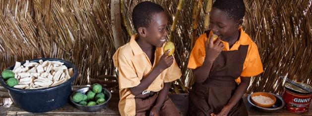El Programa de Trasnferencia de Efectivo de Zambia, a cargo del Ministerio de Desarrollo Comunitario, Salud Materna e Infantil, funciona desde 2003. Hasta diciembre de 2014, había llegado a 150.000 hogares y hay planes concretos de ampliarlo a todo el país en un futuro cercano. Crédito: FAO.