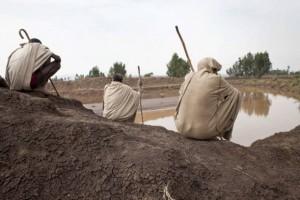 Millones de familias agricultoras en los países en desarrollo padecen falta de acceso al agua dulce. Crédito: FAO