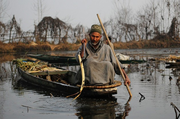 Fayaz Ahmad Khanday arranca un tallo de loto del lago Wullar, en Cachemira. Crédito: Umer Asif / IPS