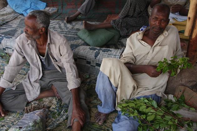 Hombres holgazanean en el mercado de la ciudad de Dire Dawa, en Etiopía, masticando qat. Crédito: James Jeffrey/IPS.
