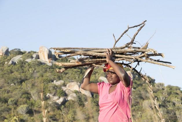 Constance Huku, de la localidad rural de Masvingo, en el sudeste de Zimbabwe, carga leña. Crédito: Sally Nyakanyanga / IPS