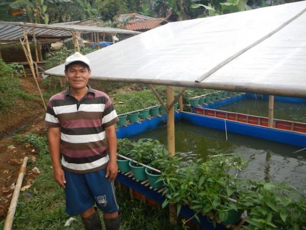 Acuaponía en Indonesia. Los sistemas bumina y yumina utilizan una técnica agrícola integrada que combina verduras, frutas y peces. Crédito: FAO