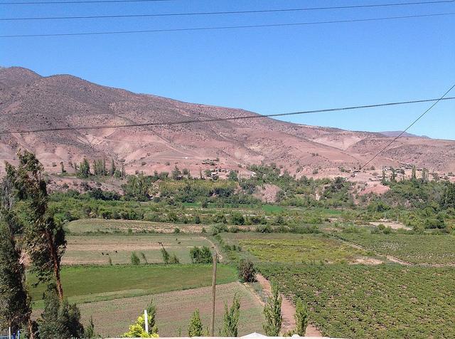 Pequeños agricultores de Samo Alto, en el norte de Chile, son obligados a compartir las aguas escasas del río Hurtado con grandes productores que instalaron una represa para aprovecharse de ellas. En el país, el recurso es un bien privado, entregado a perpetuidad a los beneficiarios. Crédito: Orlando Milesi/IPS