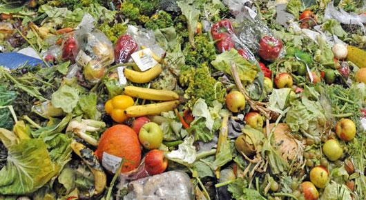 Las consecuencias sociales, económicas y ambientales del desperdicio de alimentos son graves para Medio Oriente y el norte de África, que depende mucho de las importaciones, tiene limitadas posibilidades de aumentar la producción y sufre escasez de agua y de tierras cultivables. Reducir la pérdida de alimentos es fundamental para tener sistemas de alimentación sostenibles y lograr la seguridad alimentaria. Crédito: FAO