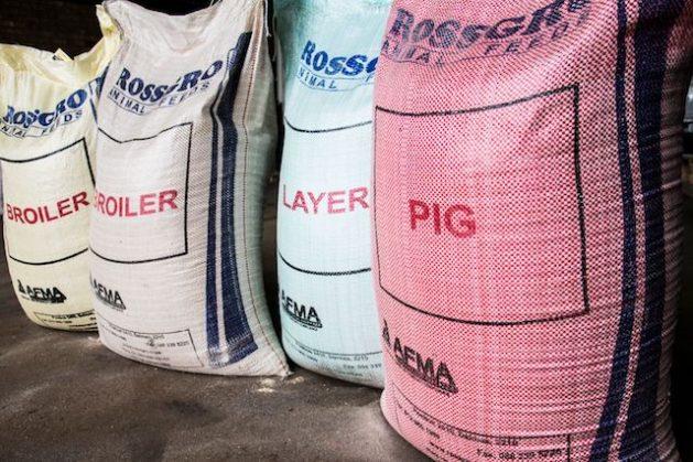 Sacos de alimentos de la agroempresa Rossgro en Sudáfrica. Crédito: Friday Phiri/IPS.
