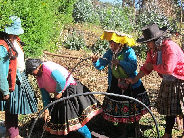 Bonificia Huamán, segunda a la izquierda, realiza una faena comunal junto a otras mujeres, en Llullucha, una comunidad quechua situada a 3.553 metros sobre el nivel del mar donde 80 familias se dedican a la agricultura de subsistencia, venciendo al inclemente clima en la región andina de Cusco, en Perú. Crédito: Mariela Jara/IPS