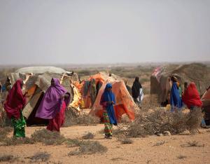 La sequía hace estragos en el Cuerno de África. Crédito: FAO