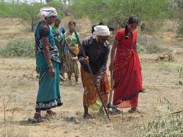Mujeres recuperan tierras degradadas en el sur de India bajo un programa gubernamental. Crédito: Stella Paul/IPS.