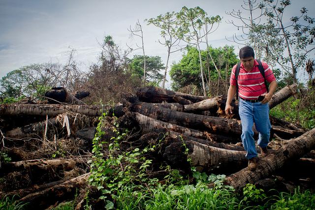 El juez Samuel Lizama, titular del Juzgado Ambiental de San Salvador, confirma durante una inspección la tala y quema de árboles para expandir el cultivo de caña en la cooperativa Santo Tomás, en El Chagüitón, parte del municipio de San Luis Talpa, en el central departamento salvadoreño de La Paz. Crédito: Edgardo Salazar/IPS