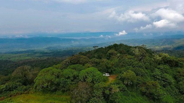 La República Democrática del Congo tiene la segunda selva más grande del mundo, unas 135 millones de hectáreas, que son un poderoso baluarte contra el cambio climático. Crédito: Roni Ziade/Forest Service.