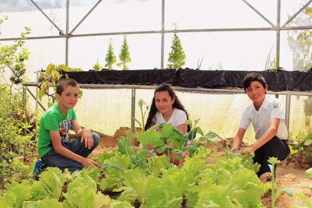 Braiton Aguilar (derecha) y otros dos estudiantes en la huerta que cultivan en la Escuela Cecilio Piedra Gutiérrez, en el pueblo del pueblo de Frailes de Desamparados, en Costa Rica. Crédito: Felipe Rodríguez/FAO