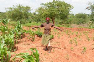 Soluciones climáticas africanas en relación al Acuerdo de París.