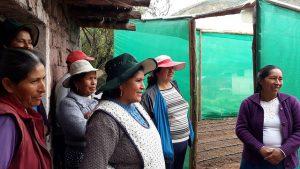 En la comunidad de Paropucjio varias mujeres se reúnen al lado del fitotoldo que acaban de construir juntas en la parcela de una de ellas, en el municipio de Cusipata, a más de 3.300 metros de altura, en la zona altoandina de Cusco, en Perú. Ellas se emocionan al hablar de la mejoría que este invernadero aportará a la vida de sus familias. Crédito: Mariela Jara/IPS