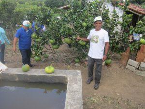Givaldo dos Santos junto a un árbol cargado de toronjas en el pomar de cítricos y otras frutas, que él y su mujer pueden cultivar gracias a la aplicación de tecnologías que les permite tener abundancia de agua para irrigar, pese a que su pequeña finca está en la ecorregión del Semiárido, en el nordeste de Brasil. Crédito: Mario Osava/IPS
