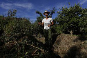 El agricultor Liuber Ojeda muestra el terreno donde obtiene abono orgánico o compost, en la finca 5 de Julio, cerca del barrio de Alamar, en el municipio de Habana del Este, en la capital cubana. Crédito: Jorge Luis Baños/IPS