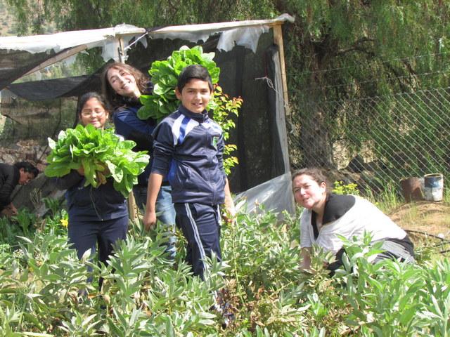 Estudiantes de la escuela rural El Llanito de Punitaqui, en el norte desértico de Chile, muestran las hortalizas del huerto que riegan gracias a la cosecha de agua de lluvia. Crédito: Cortesía de la Fundación Un Alto en el Desierto