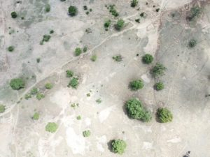 Drone visual of the area in Upper East Region, Ghana that have not been restored. Credit: Albert Oppong-Ansah /IPS