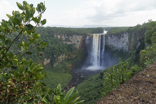 Cataratas de Kaieteur, en Guyana. Agricultores de este país caribeño denuncian la intrusión de agua salada desde hace años, lo que ocurre especial mente en la temporada seca y en las regiones donde el agua para irrigar procede de ríos y arroyos que desembocan en el océano Atlántico. Crédito, Cortesía: Dan Sloan/CC By 2.0