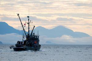En la fotografía, una trainera en el estrecho de Johnstone, en Canadá. Actividades humanas como la contaminación, la sobrepesca, la minería, la geoingeniería y el cambio climático dan un sentido de urgencia a la necesidad de contar con un acuerdo internacional para proteger la alta mar. Crédito: Winky/cc by 2.0