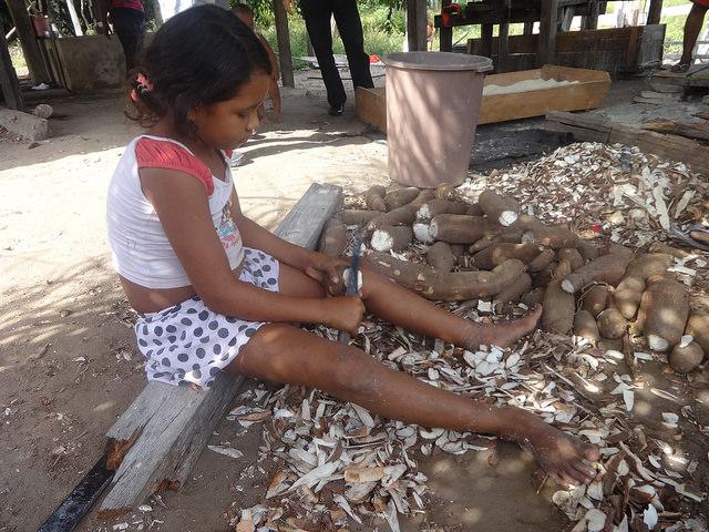 Una niña ayuda a su familia, pelando yuca en Acará, en el noreste de la Amazonia brasileña. Más de cinco millones de niños sufren desnutrición crónica en América Latina, una región donde se ha retrocedido en la meta de erradicar el hambre y la pobreza extrema, al mismo tiempo que crece la obesidad, que afecta a siete millones de niños. Crédito: Fabiana Frayssinet/IPS