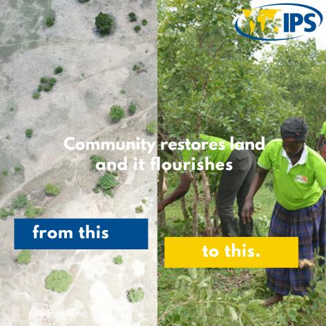 """Erin Myers Madeira, directora del Programa Mundial sobre Pueblos Indígenas y Comunidades Locales de Nature Conservancy, señaló que """"las comunidades obtienen mejores resultados que las autoridades y que otros actores a la hora de frenar la deforestación y la degradación. La comunidad akaratshie, del distrito de Garu yTempane, en Ghana, lograron restaurar tierras degradadas. Crédito: Albert Oppong-Ansah/IPS."""