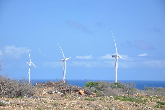 Un parque eólico instalado en Curazao. Muchos países y territorios insulares del Caribe están impulsando las energías renovables dentro de proceso de descarbonización, destinado a afrontar mejor los impactos del cambio climático, a los que son especialmente vulnerables. Crédito: Desmond Brown/IPS