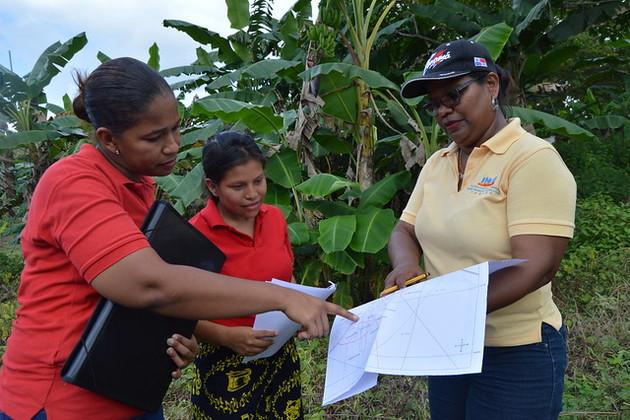 Equipo de encuestadoras de campo organizan las viviendas del entorno a visitar. Crédito: FAO Panamá