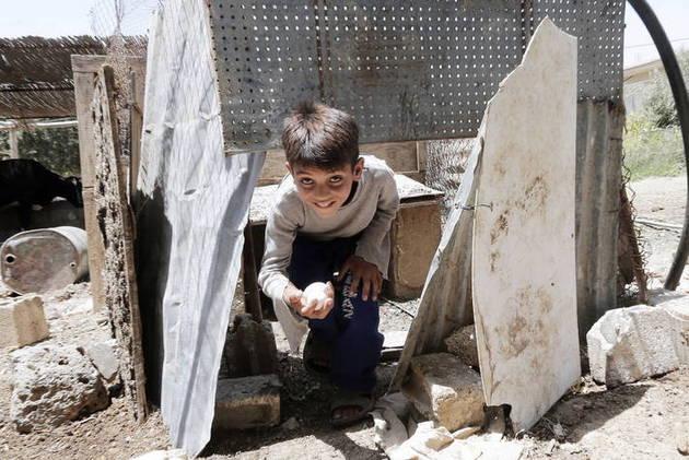 Un niño recoge huevos en Al-Ghizlaniyah, cerca de Damasco, en Siria. Crédito: Louai Beshara/FAO