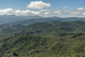 Un proyecto de ley pretende eliminar o flexibilizar las figuras legales de conservación ambiental en Brasil, lo que pondría en peligro de muerte a biomas como la de la Mata Atlántica, que ya perdió 90 por ciento de sus bosques originales, para abrirlos a la explotación de sus recursos. Crédito: Ibama