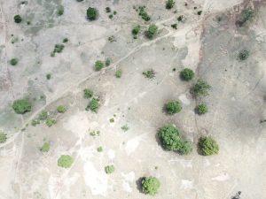 En todos los continentes y países hay problemas de degradación de la tierra, y requiere que los gobiernos, los usuarios de la tierra y las diferentes comunidades sean parte de la solución a nivel global, nacional y local. Crédito Albert Oppong-Ansah / IPS