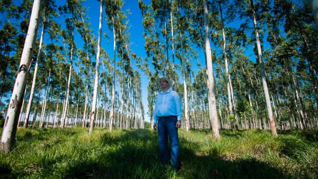 Paraguay promueve una actividad agropecuaria sostenible mediante la iniciativa de Paisajes de Producción Verde. Crédito: PNUD Paraguay