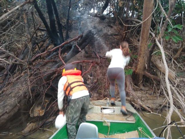 El fuego alcanzó las orillas del río Madeira, cerca de Porto Velho, capital del estado de Rondônia, en el noroeste de Brasil, donde los focos de calor alcanzaron 4.715 de enero a 14 de agosto de este año, según monitoreo del Instituto de Investigación Ambiental del Amazonia. Crédito: Cortesía de bióloga Daniely Felix