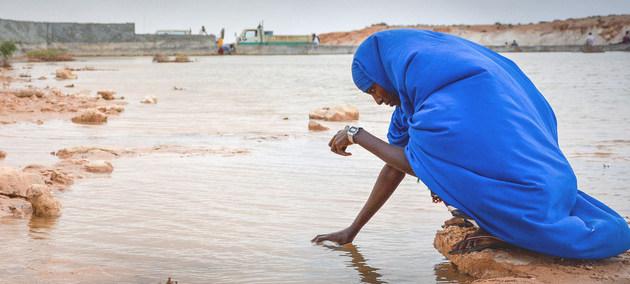 Escasez de agua e inestabilidad en el sistema alimentario producto del cambio climático.
