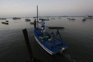Cada vez más países de América Latina y el Caribe organizan y regulan la pesca artesanal, determinante en la seguridad alimentaria de la región, para promover el manejo sostenible del recurso y los derechos de los trabajadores del sector, como los que cada día faenan en estas embarcaciones, cobijadas en la bahía de Gibara, en el municipio de la provincia de Holguín, en el este de Cuba. Crédito: Jorge Luis Baños/IPS