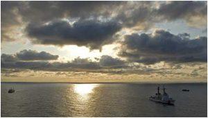 Las expediciones científicas de los últimos años han revelado que el alta mar, más allá de las 200 millas patrimoniales desde las costas, alberga una increíble variedad de especies que brindan servicios esenciales para la vida del planeta. Crédito: The Pew Charitable Trusts