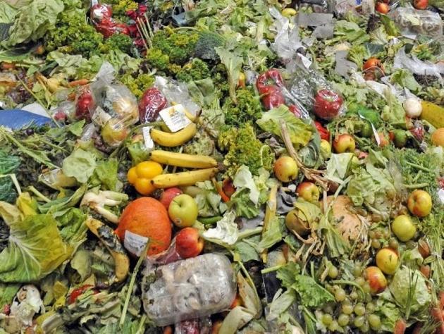 Una quinta parte de todos los alimentos que se pierden a nivel mundial desde la poscosecha hasta la etapa minorista, se producen en América Latina y el Caribe, aunque la región solo alberga nueve por ciento de la población mundial. Crédito: FAO