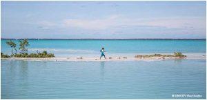 La crisis oceánica, una de las mayores amenazas del cambio climático, exige la vigencia de un nuevo Tratado Mundial de los Océanos para la efectiva protección de los mares