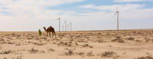 Este lunes 2 en Madrid comienza la 25 Conferencia de las Partes sobre cambio climático, la COP final antes de entrar al año definitorio de 2020, cuando muchas naciones deben presentar nuevos planes de acción climática
