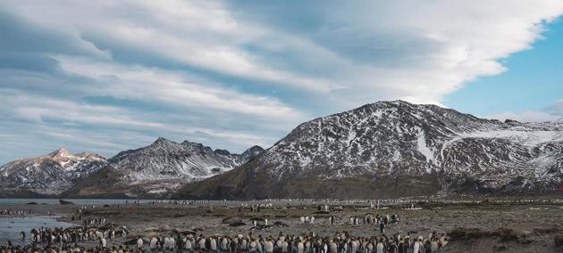 Las Metas de Aichi van a ser sustituidas por un Marco Mundial de la Diversidad Biológica Posterior a 2020, que deberá ser aprobado en la 15 Conferencia de las partes del Convenio sobre Diversidad Biológica (CDB), la llamada COP15, que tendrá lugar en la ciudad de Kunming, en China, entre el 15 y el 28 de octubre
