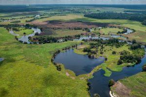 Las tierras ricas en carbono, en bosques, turberas y humedales, pueden ahorrarle al planeta una catástrofe climática, a condición de que no se destruyan ni se degraden, advirtió una investigación de la organización Conservation International divulgada este martes 31