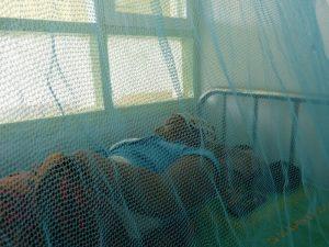 Una enferma de paludismo reposa en un centro de salud, protegida por un mosquitero. África lidia con la prevención y tratamiento de enfermedades como la malaria, el VIH/sida y la tuberculosis con sistemas de salud deficitarios, y con la pandemia de la covid-19, un gran peligro es que concentre su atención en este problema, marginando a males que, como la malaria, matan cuatro veces más personas en el continente. Foto: Mercedes Sayagues / IPS