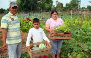 La pandemia covid-19 hace indispensable sostener en América Latina la agricultura familiar, que aporta casi dos tercios de la producción de alimentos en la región.