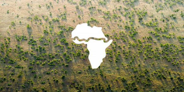 Una franja reforestada de 8000 kilómetros puede cruzar África como una muralla verde para detener el avance de la desertificación, ayudar a mitigar el cambio climático y mejorar los medios de vida de millones de personas. Imagen: UNCCD