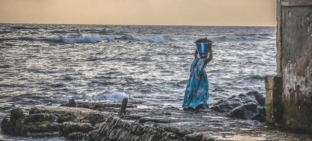 Una mujer carga mariscos en una costa de Senegal, uno de los pocos países que ha hecho un plan de acción climática para pescaderías. Foto: PNUD