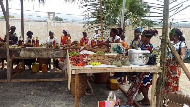 Un grupo de mujeres de África central es capacitado sobre la mejora y diversificación productiva, para ampliar la seguridad alimentaria de sus comunidades. Foto: FAO